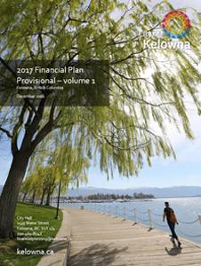 2017 Financial Plan