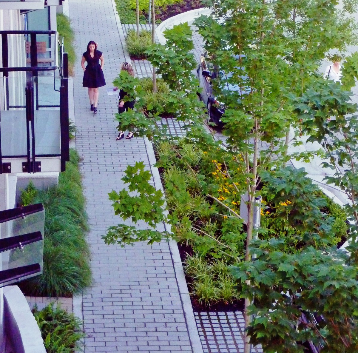 2040 OCP - examples of landscaping materials that soften development
