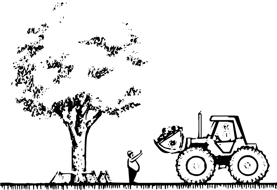 2040 OCP - Healthy, mature trees are encouraged to be maintained and protected.