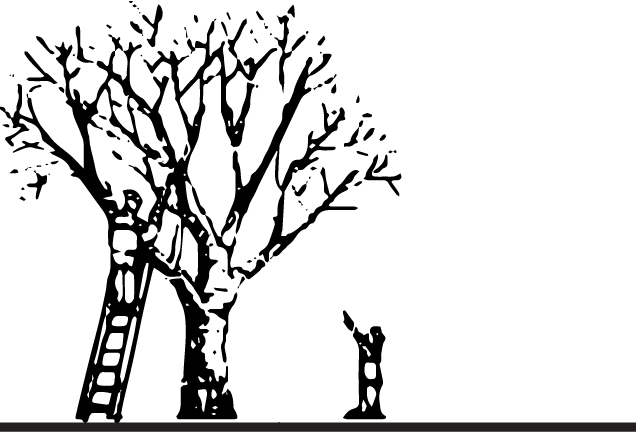 2040 OCP - Any tree pruning required is encouraged to be undertaken under the direction of a certified Landscape Architect or arborist.