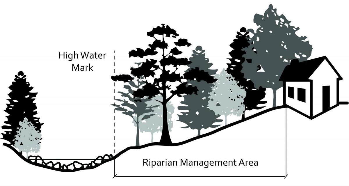 2040 OCP - The Riparian Management Area.
