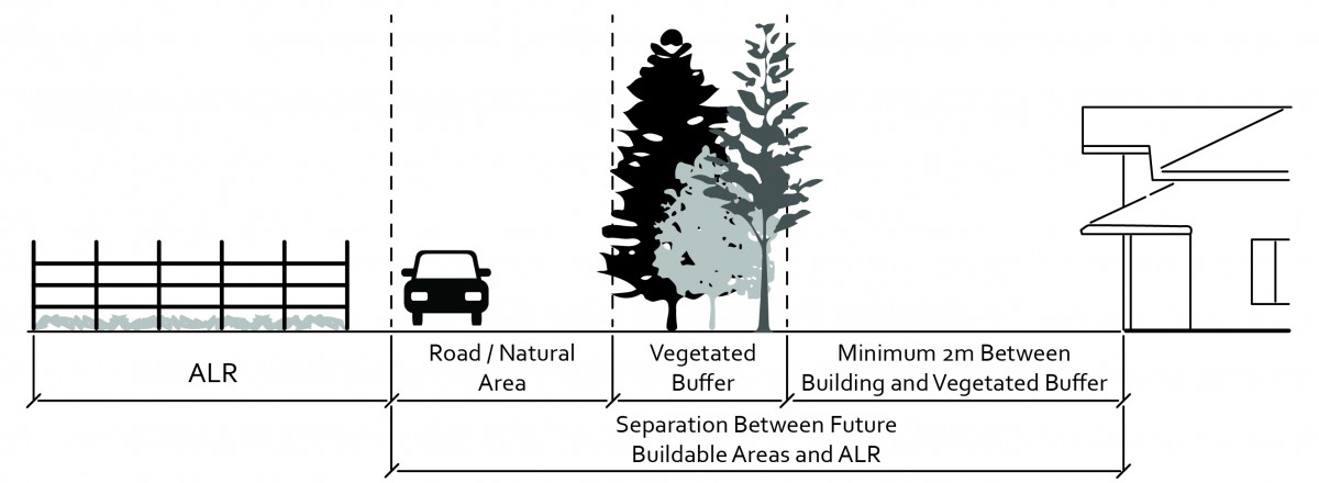 2040 OCP - Example of ground level view of vegetated buffer along the ALR boundary.