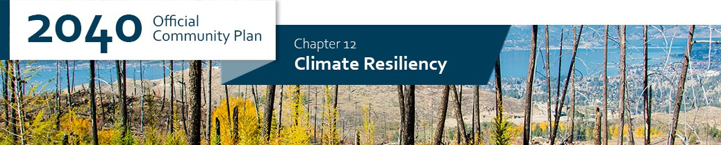 2040 OCP - Chapter 12 - Climate Change Mitigation and Adaptation chapter header, image of burnt trees following wildfire in Okanagan