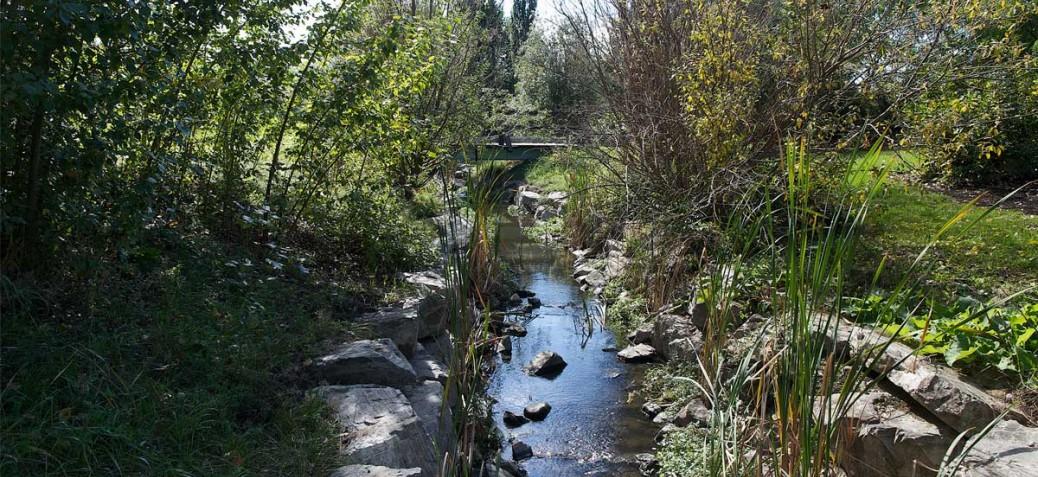 Brandts Creek Linear Park creek photo