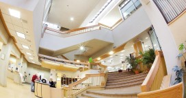 2013 Fall inside City Hall