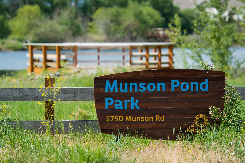 Munson pond park city of kelowna for Koi pond kelowna